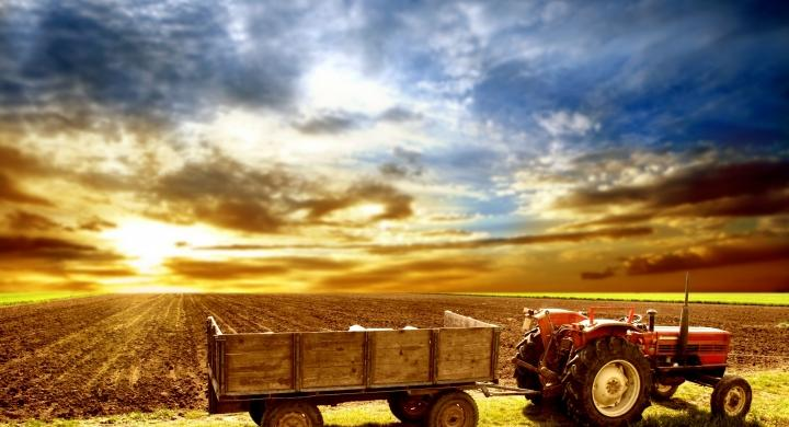 2014-10-31_tractor.jpg
